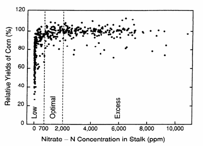 Figure 1: Corn yield and stalk N relationship