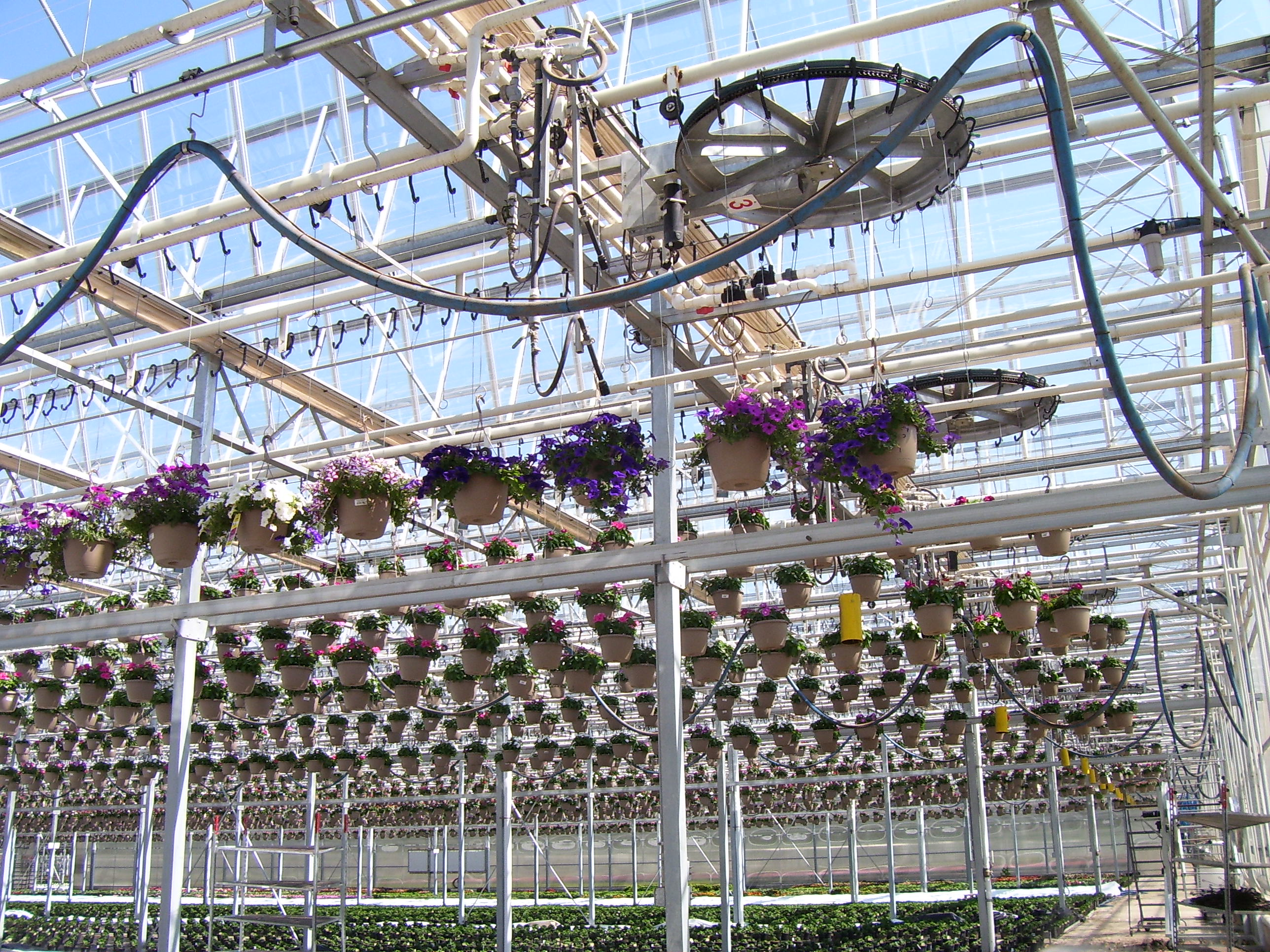 Greenhouse Amp Floriculture Increasing Production Space In
