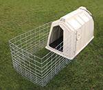 Figure1. A calf hutch with wire fencing placed around for more available room.