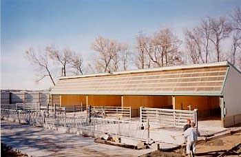 Small Scale Dairy Calf And Cattle Housing Center For