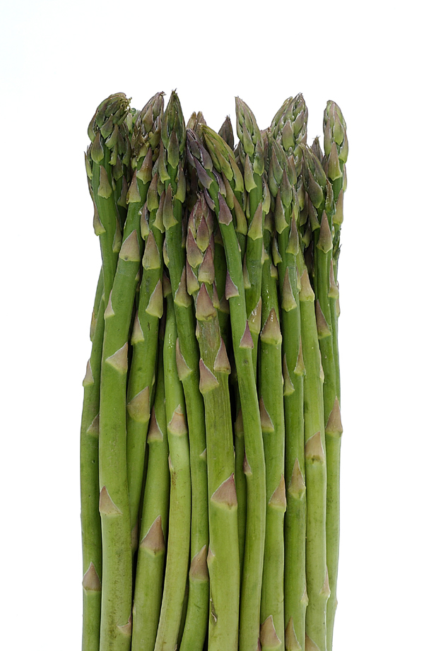 Asparagus | Center for Agriculture, Food and the Environment UMass ...
