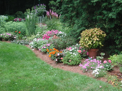 Superieur Flower Garden With Annuals And Perennials In Late July In MA