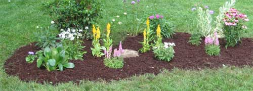 Newly Planted Flower Garden