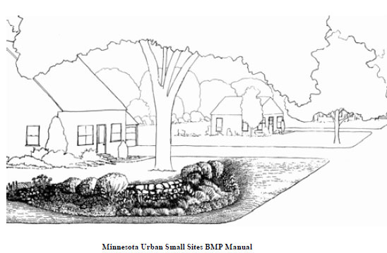 Line drawing of a rain garden