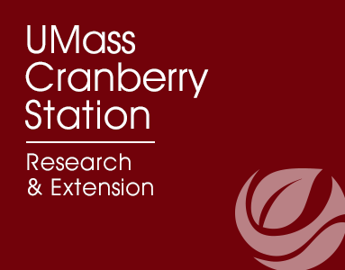 Homepage for Cranberry