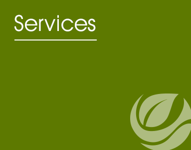 Services desktop logo