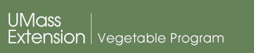 Vegetable mobile logo