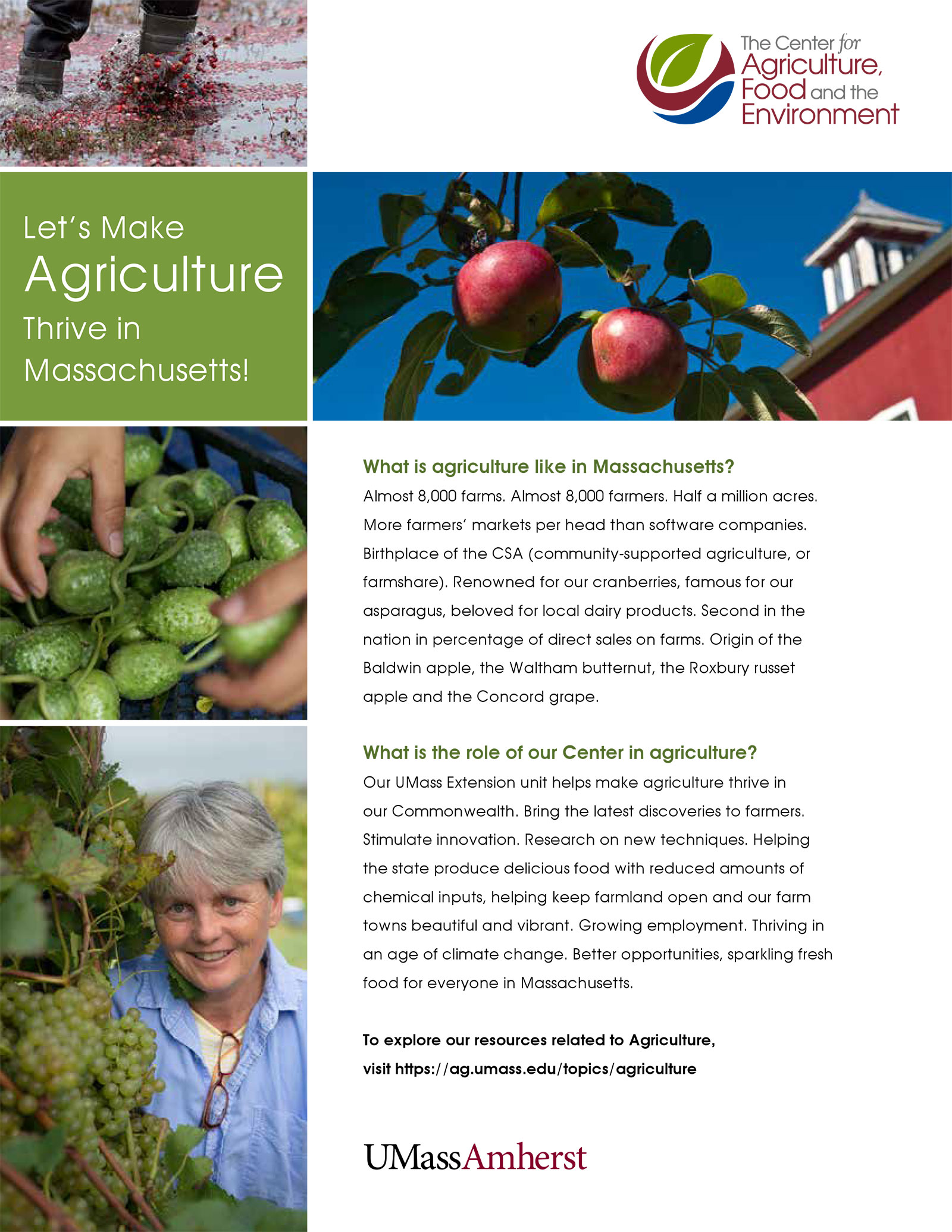 Agriculture insert for CAFE promotional material