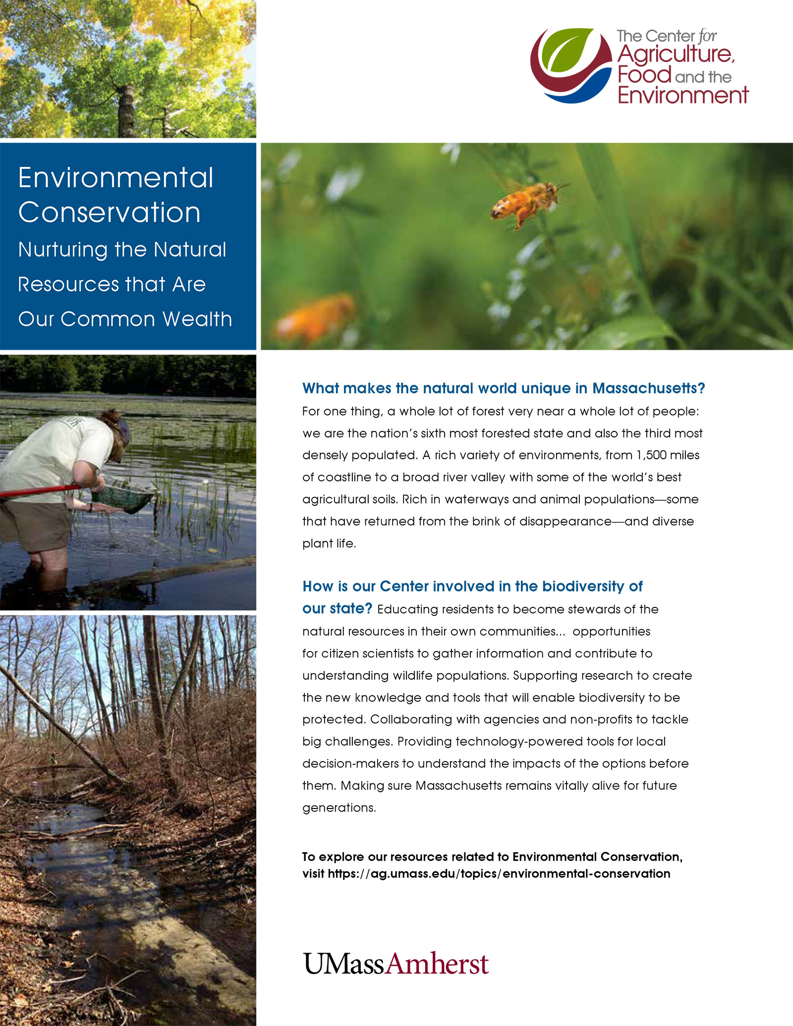 Environmental Conservation insert for CAFE promotional material