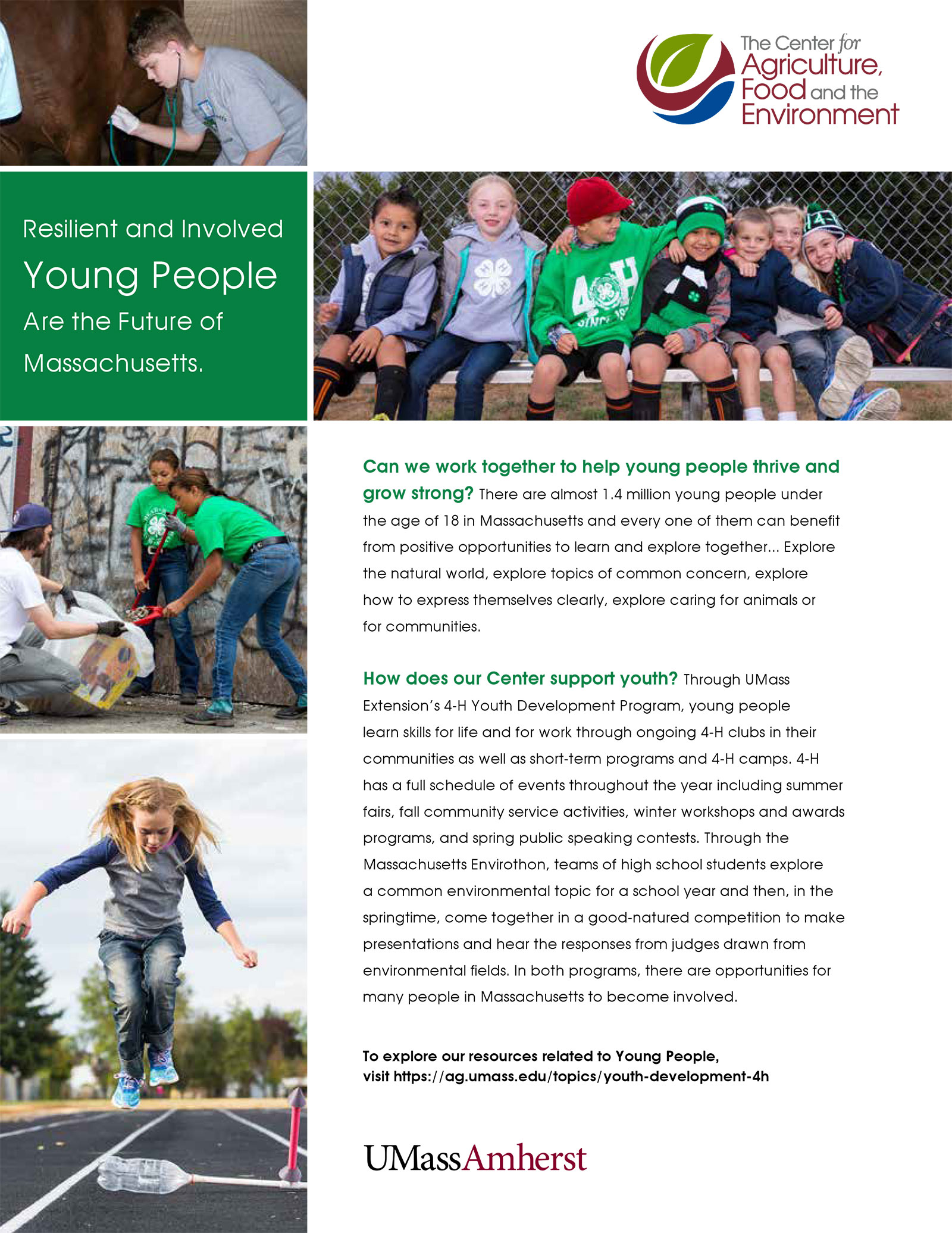 Youth Development and 4-H insert for CAFE promotional material