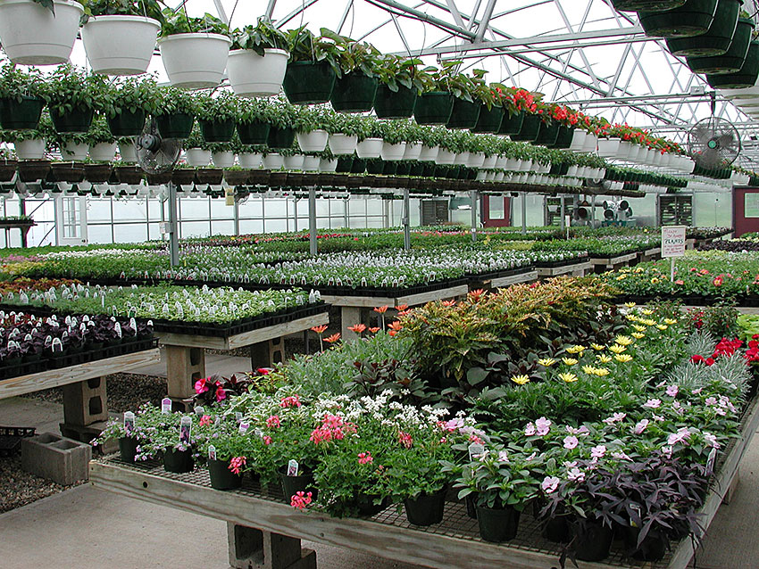 Image Result For Garden Expo New York