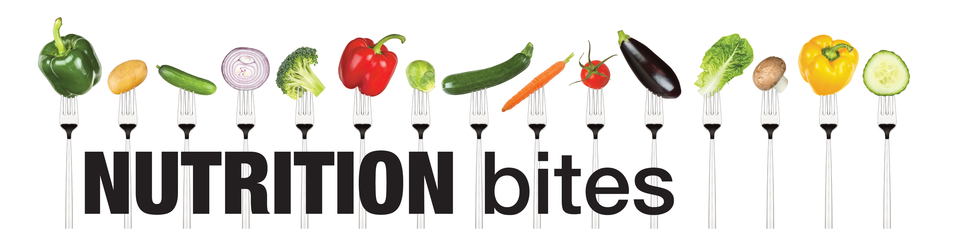 nutrition bites page banner
