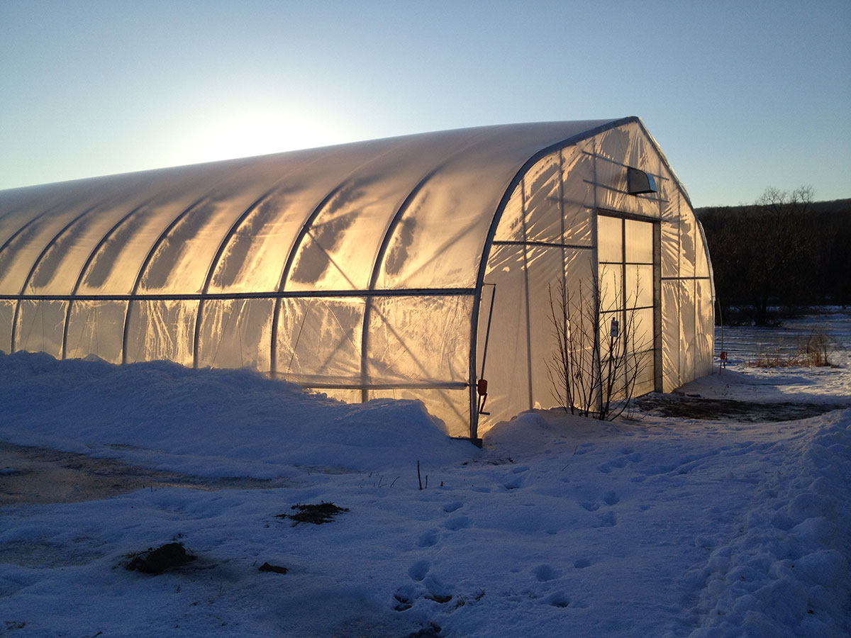 Winter Production Storage And Sales Umass Center For