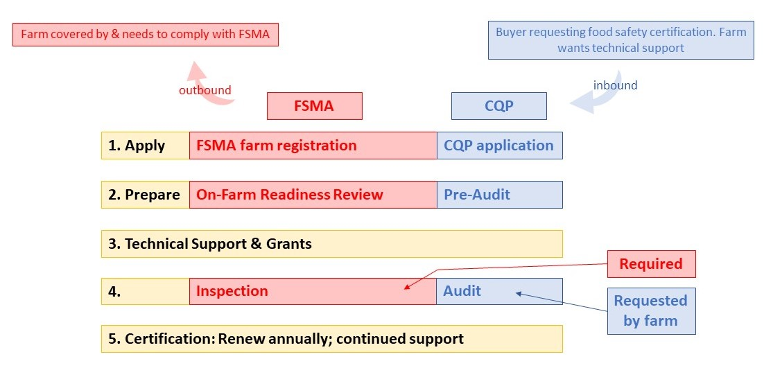 Relationship between CQP and FSMA
