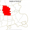MA BMSB County presence map