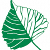 Green School logo