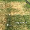 Drought resistant cultivar lower right corner