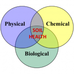 Soil Health Processes Diagram