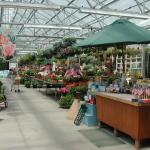 Retail greenhouse