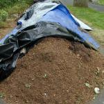 "A mulch pile that has been ""tarped down"" to hold in place before application."