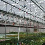 Hose nozzle hung in greenhouse