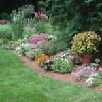 Flower garden with annuals and perennials in late July in MA