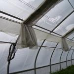 Screen in hoophouse with tight seal at the edges.