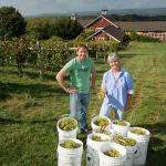 Shawn McIntire and Sonia Schloemann at UMass Cold Spring Orchards