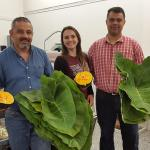 Aline Marchese of the Stockbridge School of Agriculture with two employees at Fleet Meat Market in Worcester holding taioba and abóbora japonesa grown at the UMass Research Farm