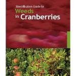 ID Guide for weeds and cranberries