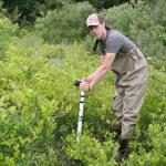 Luke McInnis, a CAFE summer scholar, inserts soil moisture probe to collect data