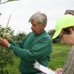 Jim Krupa and Maureen Vezina, CSO assistants, measure branch growth