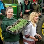 Student Farming Enterprise-trays of onions ready to be planted
