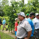 Mo Tougas tours cherry tree project