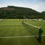 Grass tennis courts used for research