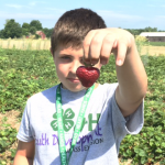 "I ""heart"" strawberries--Kerry Bickford photo"