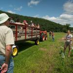 Bee Researcher, Lynn Adler shares findings