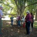 Rick Harper offeres historic tree tour on campus