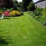 Soil compaction can be a problem in lawns and landscapes.