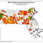 A map of cities and towns across Massachusetts where emerald ash borer has been confirmed as of 9/18/2020. (Map Courtesy of: Nicole Keleher, MA Department of Conservation and Recreation)