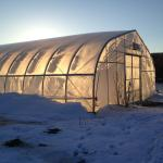 Winter Production, Storage and Sales