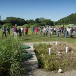 Turf Field Day 2017: Dr. Mickey Spokas discusses the role of artificial wetlands in filtering contaminants from wash water