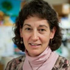 Associate Professor Michele Klingbeil