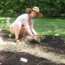 Renaissance Center Gardens-Jennie Bergeron, Head Gardener