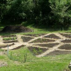 Renaissance Center Gardens-path patterns typical of the era