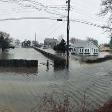 Flooding in Dennis after January 2018 storm. Photo credit Rebecca Westgate
