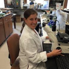 Elisha Allan-Perkins identifies nematodes under microscope