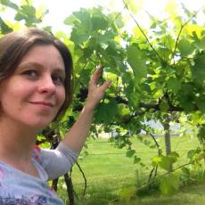 Elsa Petit researching old hardy grapes