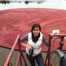 Erika Saalau Rojas, a plant pathologist on staff at UMass Cranberry Station