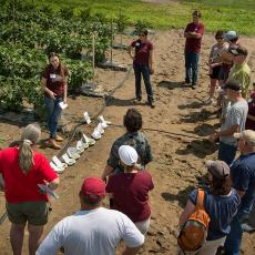 Extension education continues today at Mass Ag Field Day